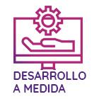 Empresa de desarrollo a medida y programación